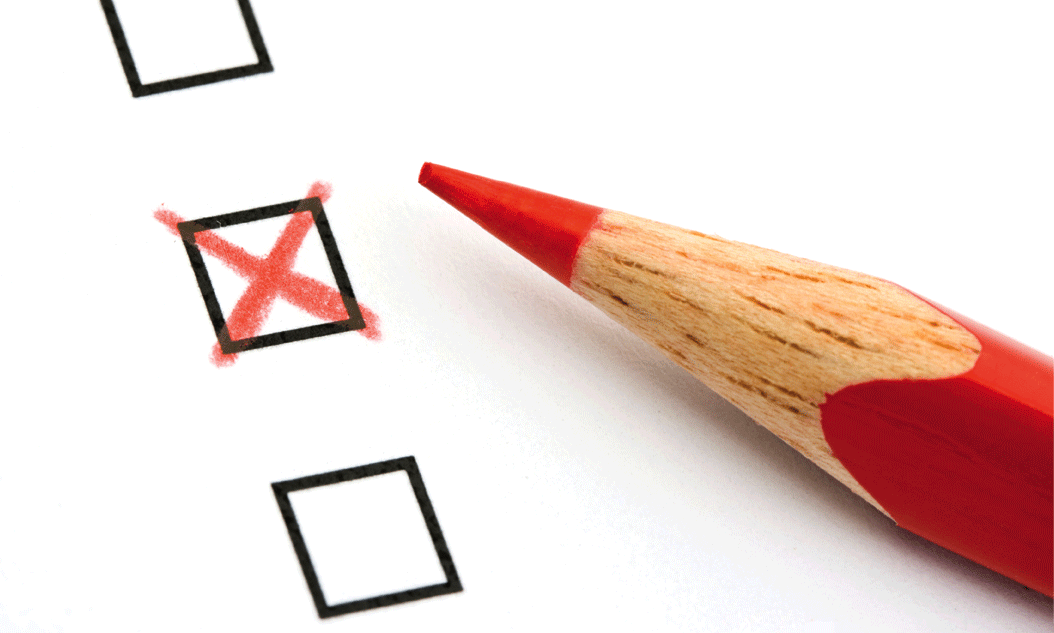 Survey Umfragen
