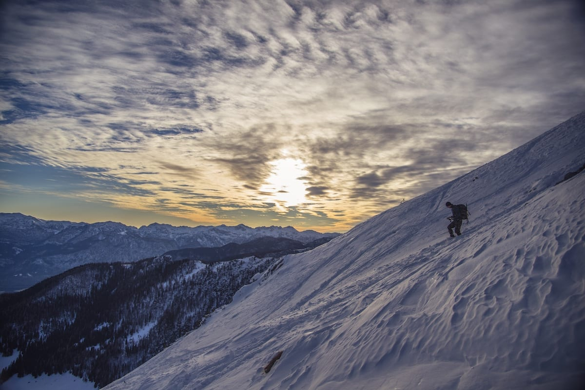 At Taos Ski Valley, Labrador Avalanche Techs Keep the Slopes Safe