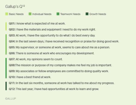 Gallup Basic needs chart; employee engagement